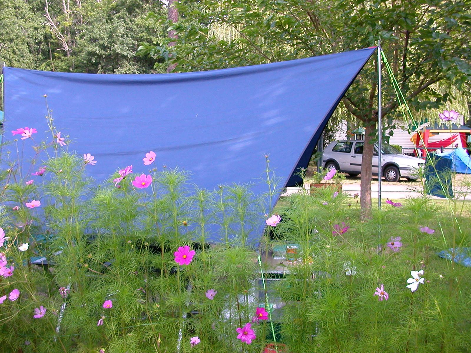 Emplacements camping bassin d 39 arcachon avec piscine - Camping bassin d arcachon avec piscine ...