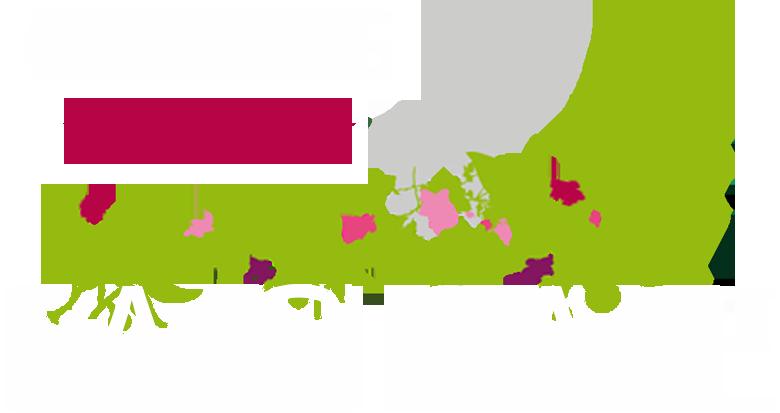Camping La Cigale 4 étoiles, Bassin Arcachon, Arès, Cap Ferret, mobile home, chalet, tente piscine chauffée