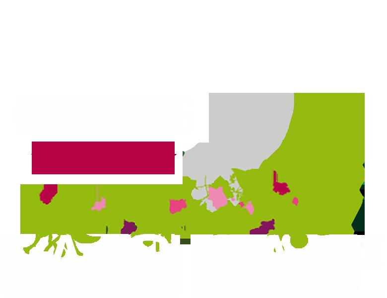 Camping Bassin d'Arcachon LA CIGALE