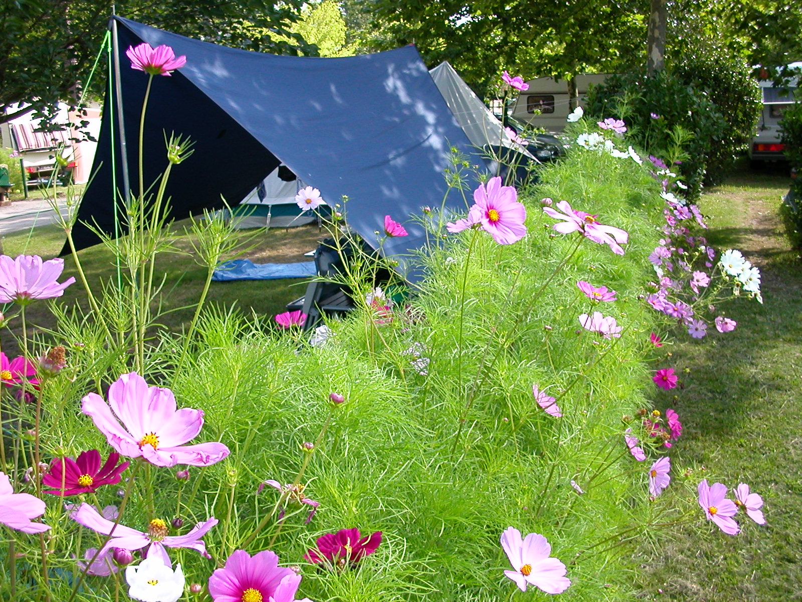 Camping eco friendly Bassin d'Arcachon